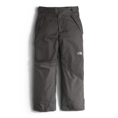 The North Face Freedom Insulated Ski Pant Boys'