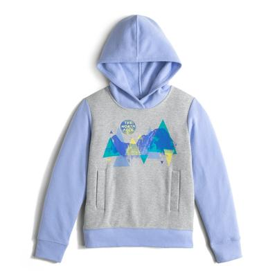 The North Face Logowear Pullover Hoodie Girls'