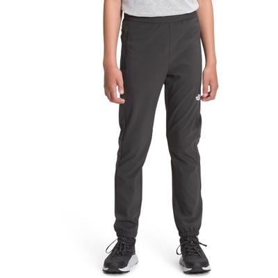 The North Face On Mountain Pants Boys'