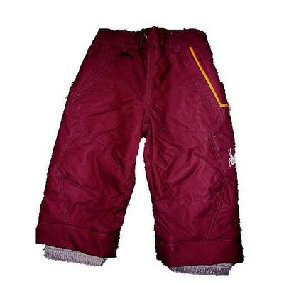 Spyder Boys' Independent Pants