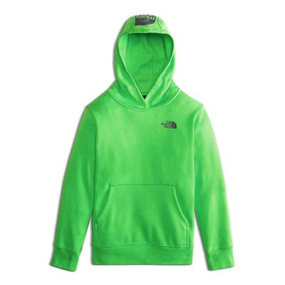 The North Face Logowear Pullover Hoodie Boys'