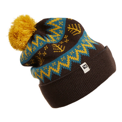 Flylow Revival Beanie
