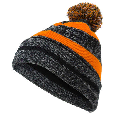 Spyder Icebox Hat Boys'