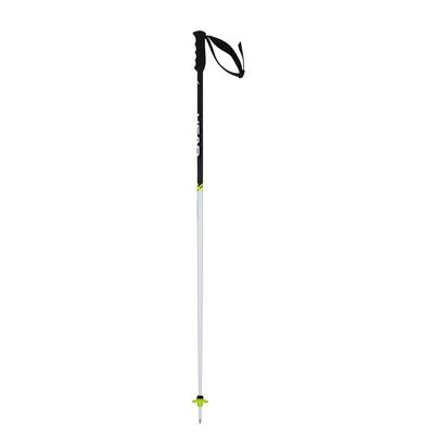 HEAD Worldcup SL Ski Poles