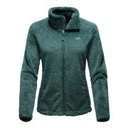 The North Face Osito 2 Jacket Women's Balsam Green Stripe