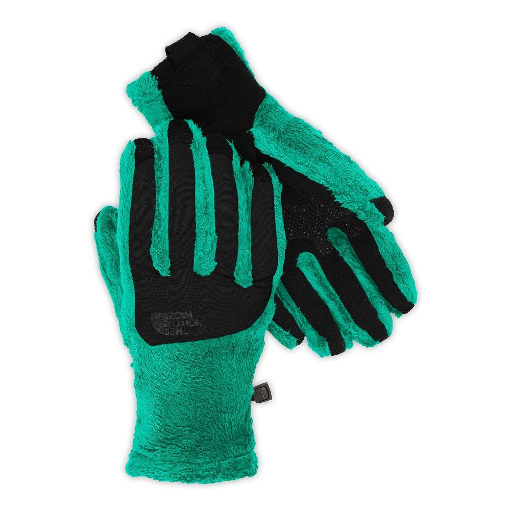 64ab9f2c4 The North Face Denali Thermal Etip Glove Women's