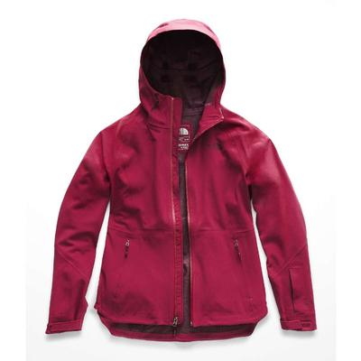 The North Face Apex Flex GTX Jacket Women's