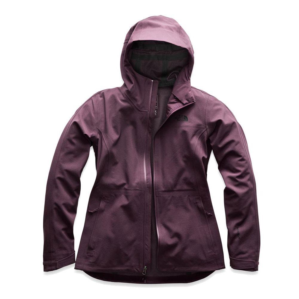 The North Face Apex Flex Gtx 3.0 Jacket Women's