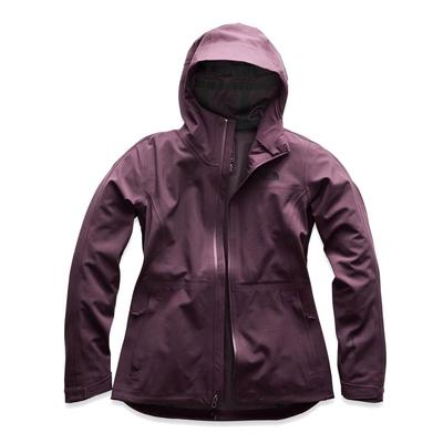 The North Face Apex Flex Gtx 3.0 Jacket Women's