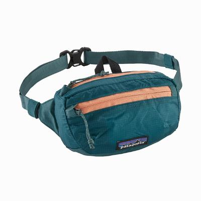 Patagonia Lightweight Travel Mini Hip Pack