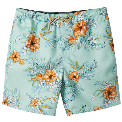 O'Neill Seabreeze Volley Shorts Men's