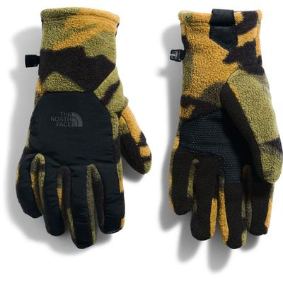 The North Face Denali Etip Gloves Men's