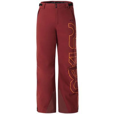 Oakley Cedar Ridge 2L 10K Insulated Pant Men's